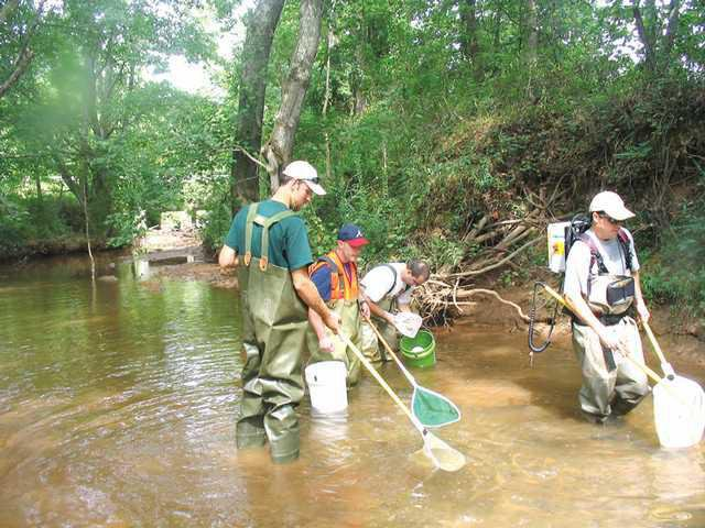 8f8d21b282b1 A group collects samples from Flat Creek during work last year to compile  data for a Watershed Improvement Plan and a U.S. Army Corps of Engineers  Ecosystem ...