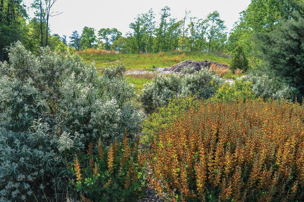 the childrens garden at the atlanta botanical gardens gainesville campus could open by summer 2019 it will be located on the highest point in the garden - Gainesville Botanical Garden
