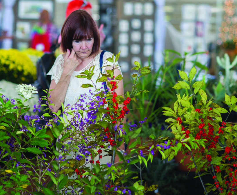 See how Fall Expo can help you grow your gardening chops ...