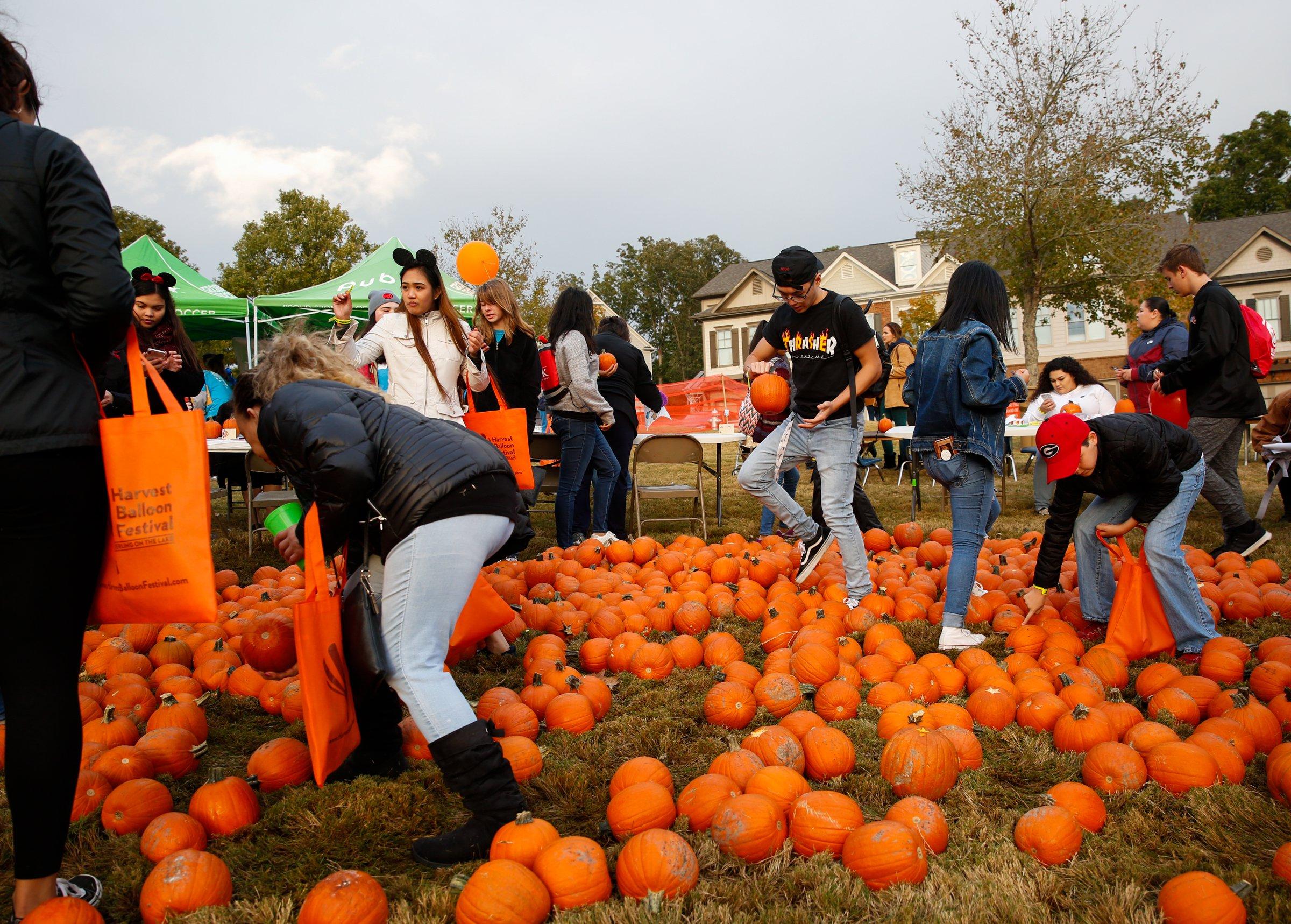 Harvest Balloon Festival