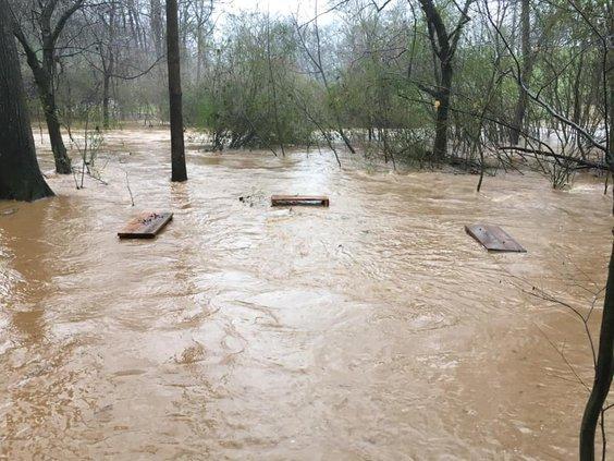 West Fork Little River.jpg