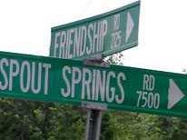 Spout Springs traffic